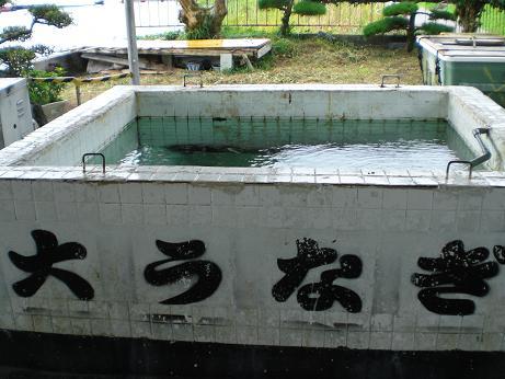 Kagosima_011